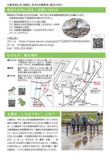 七豊米2021チラシ (2).jpg