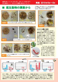 浸透性殺虫剤は必要か_ページ_3.jpg