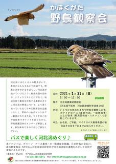 野鳥観察会_高解像度.jpg