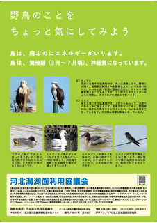 kahokugatarule2017_ページ_2.jpg