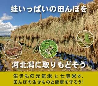 kome_order.jpg