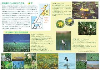 souma_2.jpg
